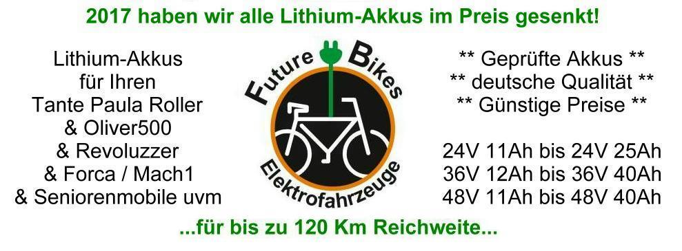 Lithium-Akkus vom Fachmann